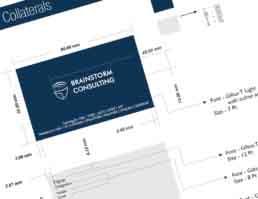 Brainstorm Consulting Brand Logo Design