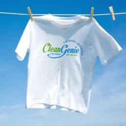 Clean Genie Brand Logo Design