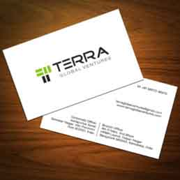 Terra Visiting Cards Design