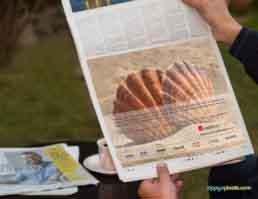 Mindlance Newspaper Ad Design